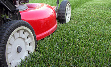 NV Lawn and Landscape Lawn Maintenance Services Northern VA