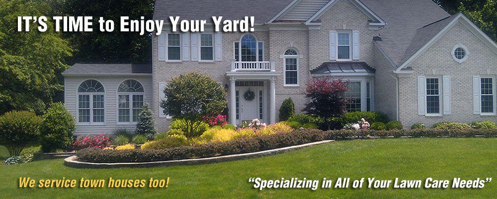 It's Time to Enjoy Your Yard!