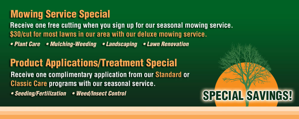 NV Lawn and Landscape Service Specials